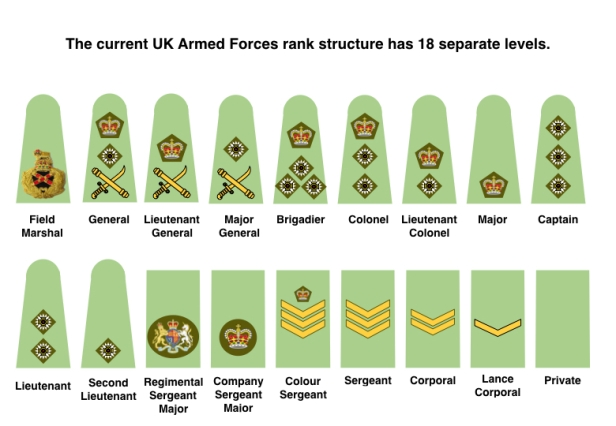 Do we need to simplify the rank structures of UK Armed