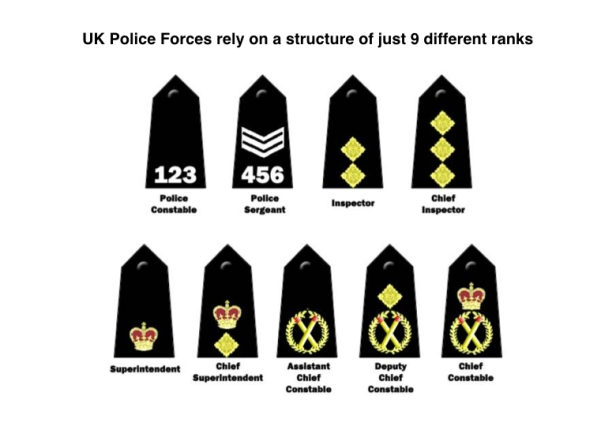 Proposal for simplified rank structure.002